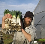 Growing Vegetables for Seasonal Extension